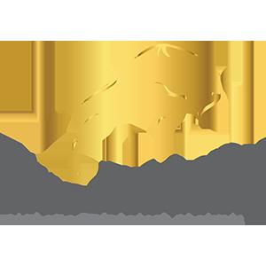 True Academy